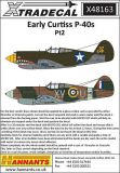 XD48163 Early Curtiss P-40s Part 2