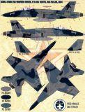 FBD48070 F/A-18 Hornet Aggressors
