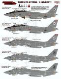 FTD48083 F-14A/B/D Tomcats at War, Teil 1