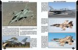 RAP017 The Modern Viper Guide - The F-16 C/D Exposed (2. Auflage)