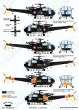 BD48145 Alouette III French Air Force