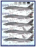FD&S4819 F-14D Tomcat Colours & Markings Part 10