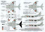 SE0132 AV-8S Matador & TAV-8S Matador Spanish Navy