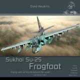 DH-017 Sukhoi Su-25 Frogfoot