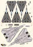 DXM72043 F-14 Tomcat VF-2, VF-11, VF-31, VF-101 & VF-103 Low Visibility