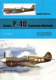WT077 Curtiss P-40 Tomahawk/Warhawk